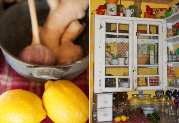 antiques, Maine, Northern Maine, kitchen, lemons, garlic, antique kitchen, photography, Nanette Faye Photography