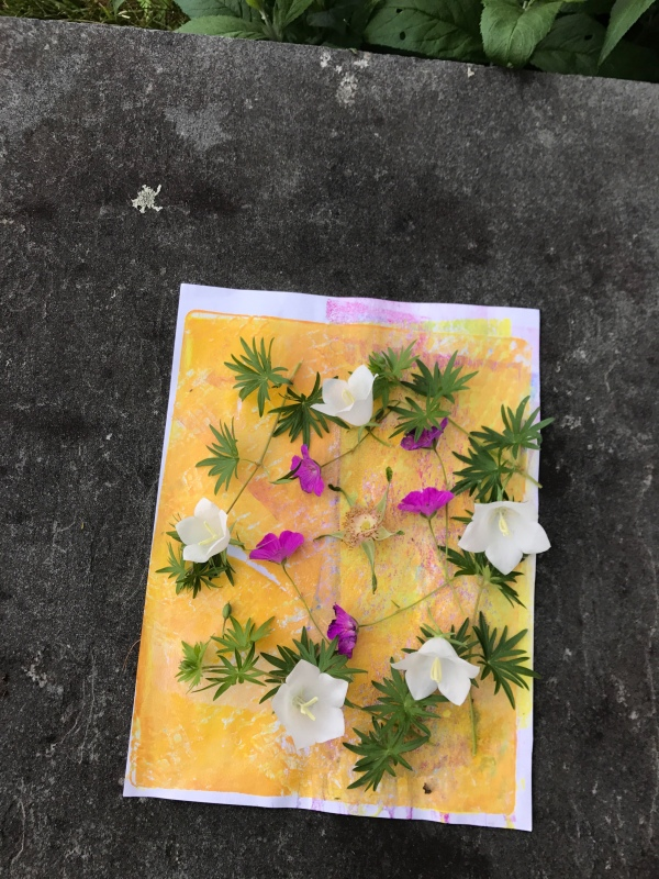 maine summer, maine, summer art, maine coast, rosa rugosa,